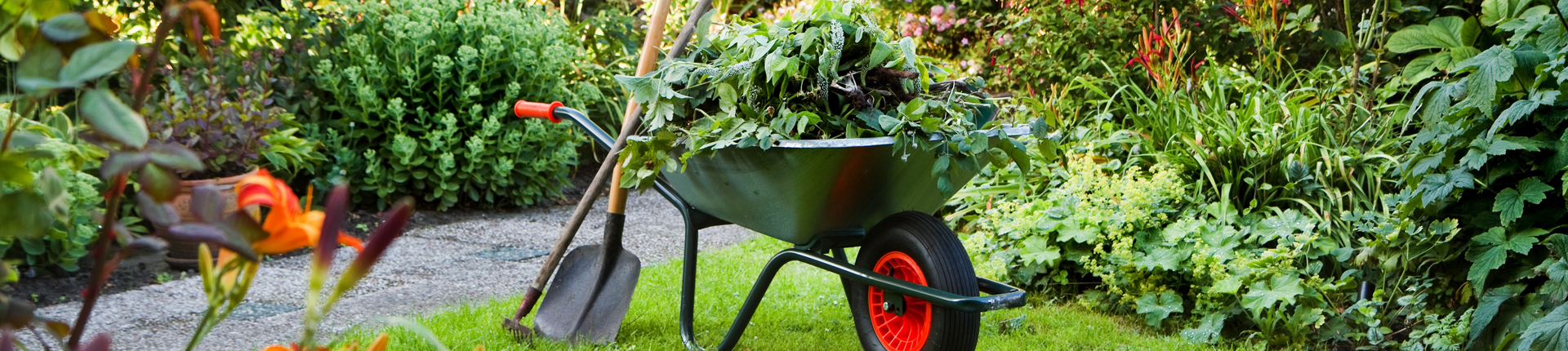 gardening-classes-cork2
